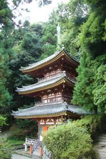 babatanukiのブログ-日之本元極気功教室 松尾寺