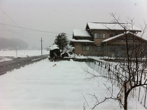 不思議大好き ババタヌキ-日之本元極気功教室 景色
