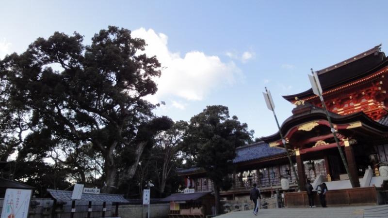 不思議大好き ババタヌキ-日之本元極気功教室 奈良
