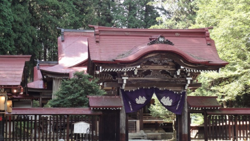不思議大好き ババタヌキ-日之本元極気功教室 新宮神社