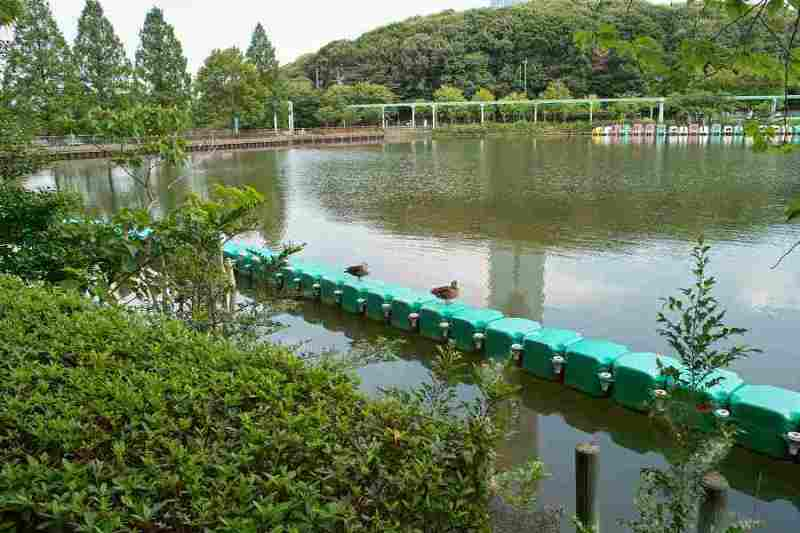 babatanukiのブログ-日之本元極気功教室 水
