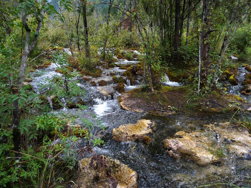 babatanukiのブログ-日之本元極気功教室 流れる川