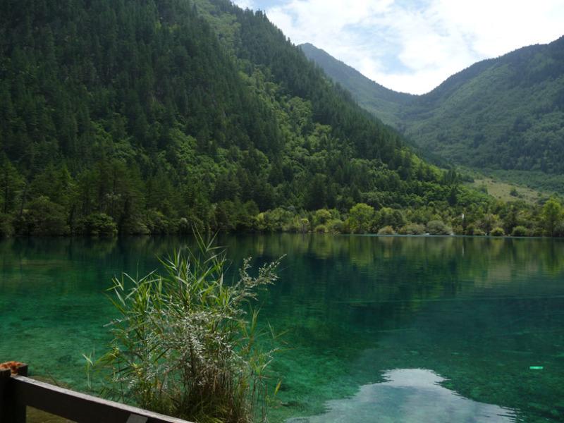 不思議大好き ババタヌキ-日之本元極気功教室 湖