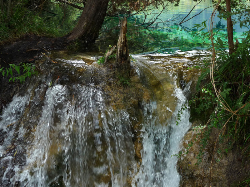 不思議大好き ババタヌキ-日之本元極気功教室 したたる水