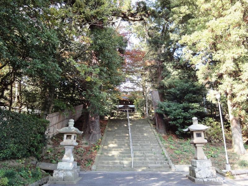 不思議大好き ババタヌキ-日之本元極気功教室 階段